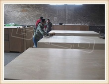 ukraine birch plywood with good quality(PLYWOOD MANUFACTURER)