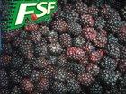 New crop frozen blackberry