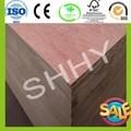 Multistrato di betulla di alta qualità/multistrato di betulla del baltico fogli/18mm compensato marino con prezzi a buon mercato