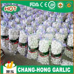 2013 New garlic Crop / Normal garlic