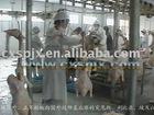 chicken slaughter house/Slaughtering machine/equipment/machinery