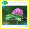 100% natural red clover extract/ red clover extract powder isoflavone/ pure natural red clover extract