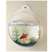 Wall-mounted acrylic fish bowl