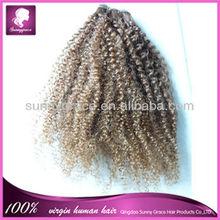 100% Virgin human hair kinky curly Malaysian hair weft