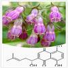 Radix Arnebiae/Radix Lithospermi/gromwell root/arnebia root / Lithospermum erythrorhizon