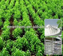 Stevia Sugar RA-40% 60% 80% 95% 98%