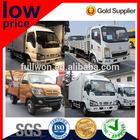 Light Truck/ Pickup