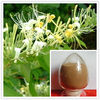 plant extract Extracts from Flos Lonicerae flower extract
