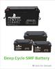 Sealed Maintenance Free N60L(46B24L) Auto Battery