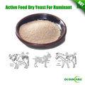 activos de alta calidad de la alimentación levadura seca para rumiantes
