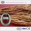 Bulk Angelica Root Oil