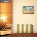 baratos central del radiador de calefacción