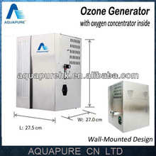 4-10g/h wall-mounted corona discharge ozonizer in China