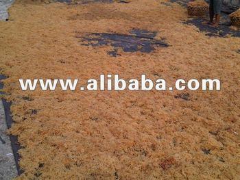Euchema Spinosum ,Cottoni, Gracilaria Seaweeds