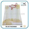 La fabricación de bolsa de la compra/diseño plástico de embalaje bolsa/impreso bolso de mano
