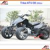 Mini Go Kart F1 Racing Go kart 110cc ATV 250cc ATV quad ATV 250cc Trike 3 wheels 250cc engine Trike Racing ATV