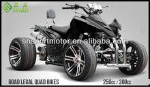 2013 Chinese 250ccm Racing ATV 4-Stroke Quad ATV