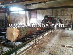 Timber logs, pine logs, wood logs