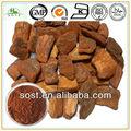 Chinês extrato vegetal Natural em pó casca de pinheiro OPC