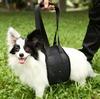 Adjustable pet carrier dog lift harness