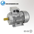 MS Series Three Phase 500 hp electric motor