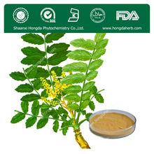 High Purity Boswellia Serrata Extract 65%