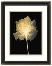 Hot selling Framed Art Black and white flower