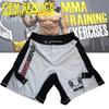 Custom made boxing shorts MMA Gear wholesale MMA shorts