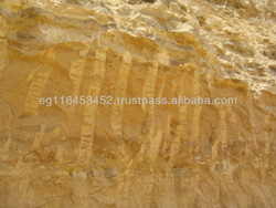High Grade Egyptian Rock Phosphate