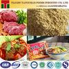 Halal Certified Spray Dried Beef Powder Seasoning