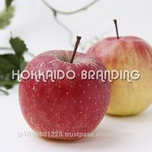 Fuji Apple - Delicious Crisp Apples Grown in Northern Japan