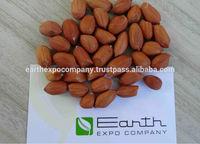Peanut Commodity