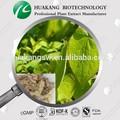 Gmp epimedium extracto en polvo/horny goat weed extracto( ting)