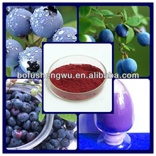 bilberry extract 25%/bilberry /cranberry/ blueberry extract/bilberry extract 25% anthocyanidin
