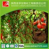 Factory supply organic goji berry extract