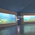 Tanque de los pescados, el diseño moderno del acuario de acrílico, las hojas de acrílico para el acuario