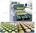 De haute qualité biscuits et biscuits faisant la machine/mini cookies machine