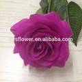 Natural flores rosa, Latex real toque pequeno rose flores, Única rosa flor