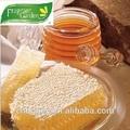 العسل الطبيعي النقي