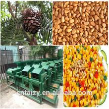 pine nut shelling machine | pine nuts sheller | Cedar nut sheller
