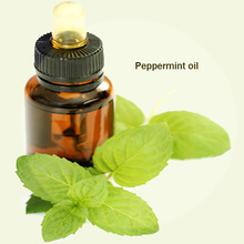 Buy Bulk Chinese Peppermint Oil Free Sample Bulk Chinese New Quality Products Natural Fresh Liquid Mint Essential Oil