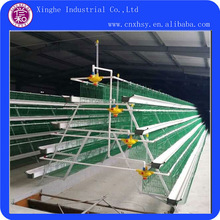 Automatic Multi-tier Easy Clean Chicken Cages