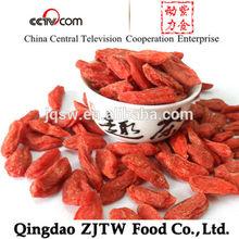 Fresh Fruit Goji Berries Health Food