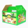 Corrugated Carton/Corrugated Paper Box&Corrugated Box