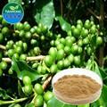 2015 porcellana produttore di caffè verde biologico estratto di fagiolo, verde chicco di caffè estratto in polvere, puro caffè verde estratto di fagiolo