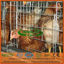Innaer Electro Galvanized Chicken Cages