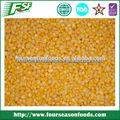 2014 estándar de la exportación de buena calidadiqf granos de maíz dulce, o los recortes en la mazorca