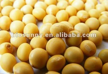 High quality of soybean extract Isoflavones 40% by HPLC