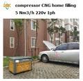 Compresor de gas natural 3- 5nm3/200 h barra de psi 3600 abastecerse de combustible para el hogar de la estación de gnc( venta caliente)