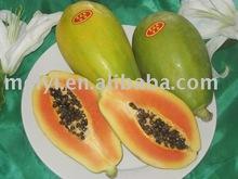 papaya flavor
